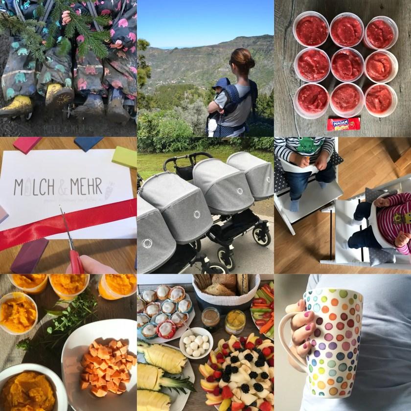 Highlights 2017 Milch und Mehr Blog Gesundheit Ernaehrung