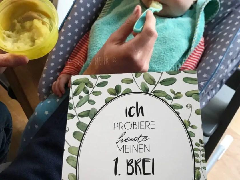 Beikosteinfuehrung mit Brei oder Baby Led Weaning Erfahrung