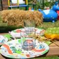 Bauernhof Kindergeburstag DIY Inspirationenen