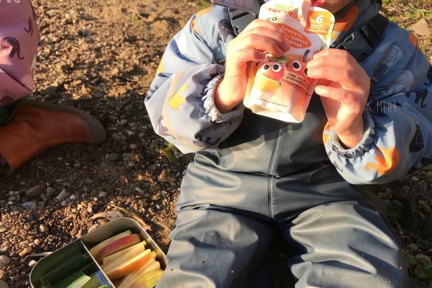 gesunde Kindersnacks Quetschbeutel