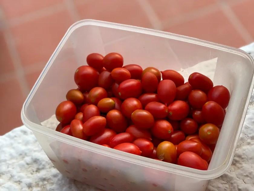 Tomaten geschenkt