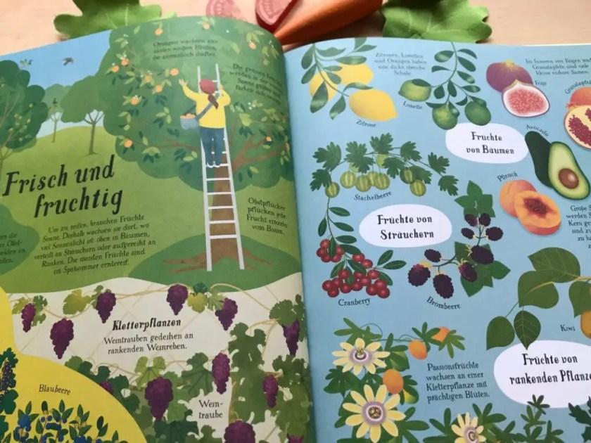 Sachbuch fuer Kinder Ernaehrung