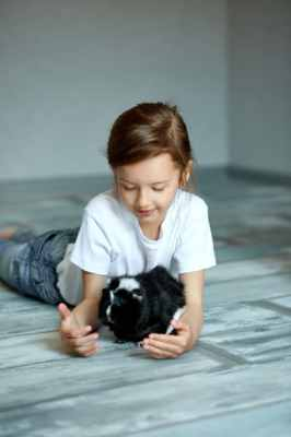 criança brincando com porquinho da índia
