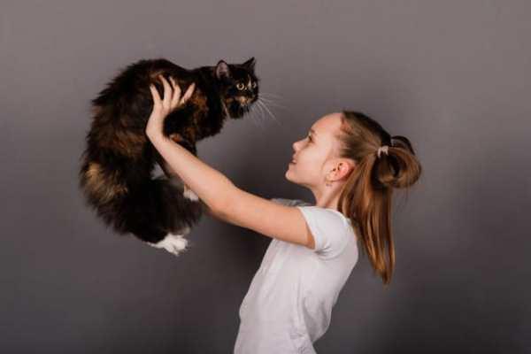 criança com um gato nos braços