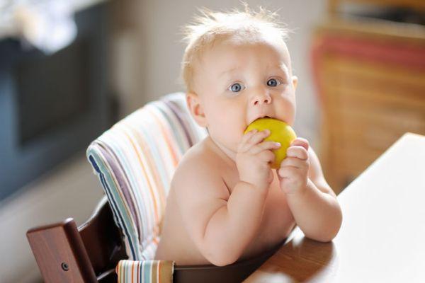 bebê pronto para introdução alimentar