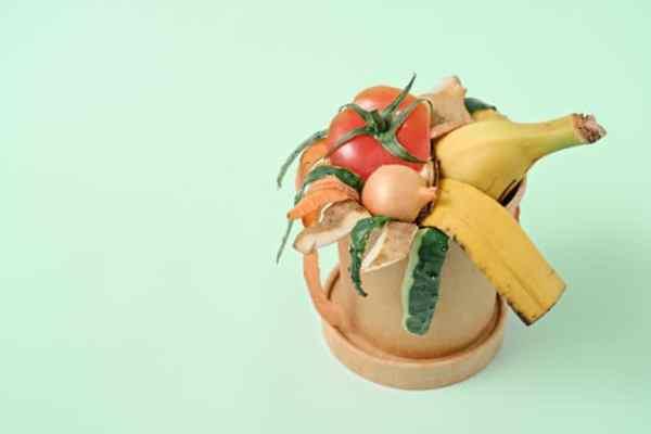 resíduos de alimentos