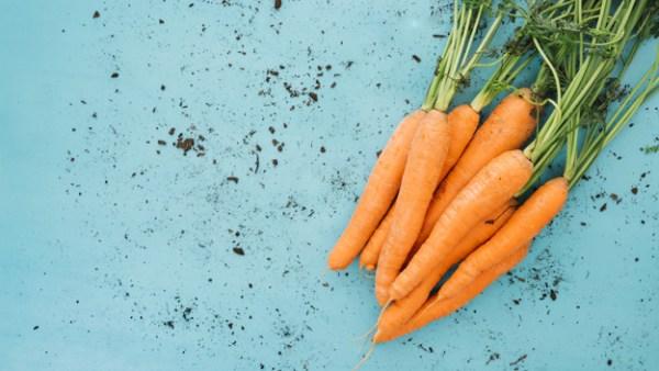 cenoura alimentos ricos em ácido fólico