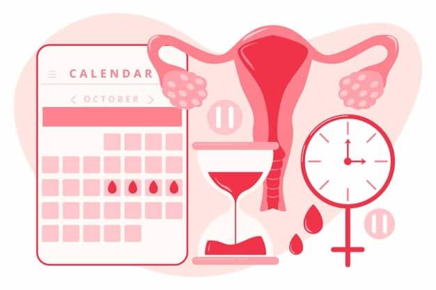 primeira menstruação pós-parto