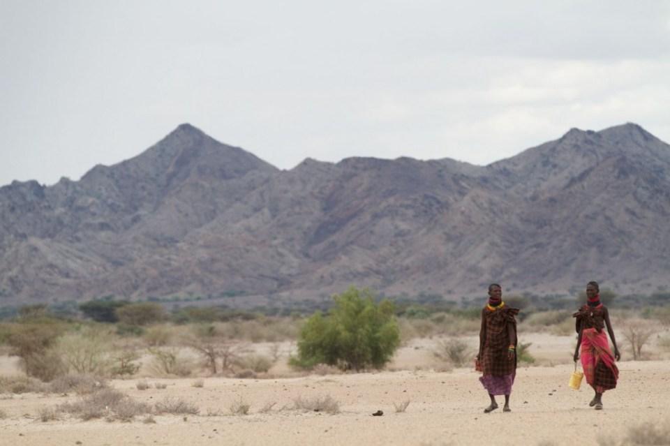 Merlin photo assignment in Kenya