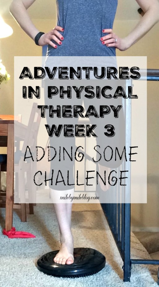 During week 3 of physical therapy we continued working on hip strength but added some challenge to those exercises. These are the exercises I learned this week.