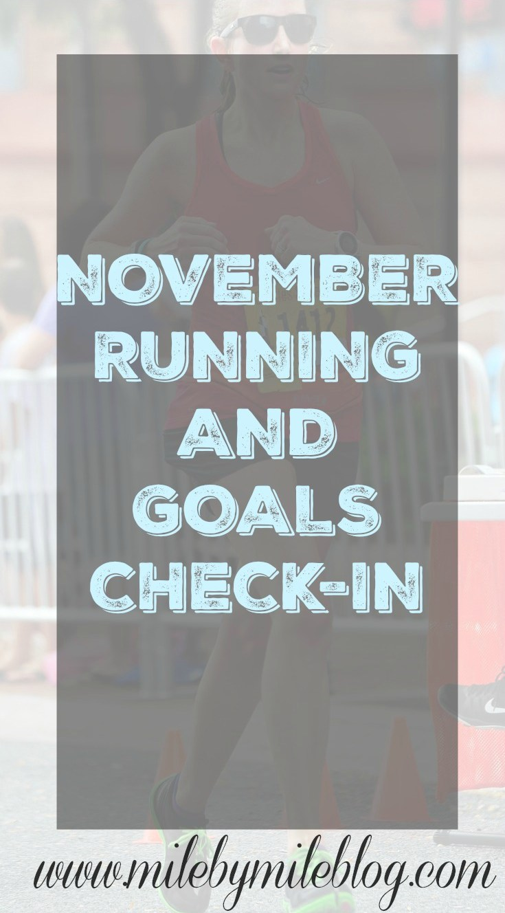 November Running and Goals Check In