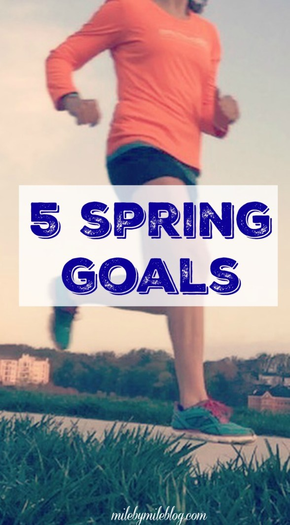 Have you set any spring goals?I finally decided what I will focus on over the next few months. My priority is injury recovery, but there are a few other things I would like to work on as well.