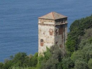 torre-saracena-polanesi