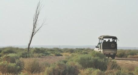 Shaumari Wildlife Reserve reopens in Jordan
