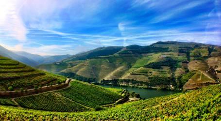 Via Navegável do Douro pode chegar ao milhão de turistas em 2017