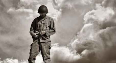 Os Filhos Esquecidos da Grande Guerra Remembrance Day