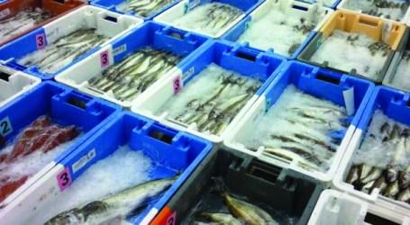 Pescadores querem activar Fundopesca
