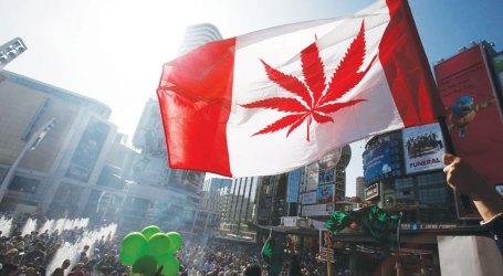 Doctors Nova Scotia makes 6 recommendations ahead of cannabis legalization