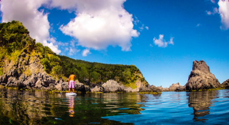 Governo dos Açores quer combater alterações climáticas