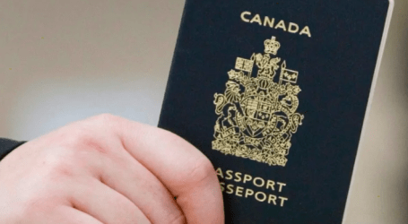 'It's fraudulent': Former immigration official says action needed on 'passport babies'