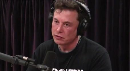 Elon Musk fuma marijuana e bebe álcool durante gravação de podcast