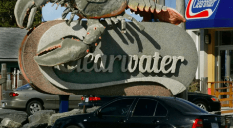 Seafood giant Clearwater convicted of 'gross violation' in lobster fishery