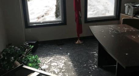 Deer hits the bar, after smashing into Oshawa politician's office Social Sharing