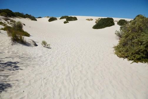 Sanddünen, Sandduenen, Sand, Little Sahara, Kangaroo Island, Sandboarding, Sandboard, fun, Spaß, spaßig, what to do, Australien, Roadtrip