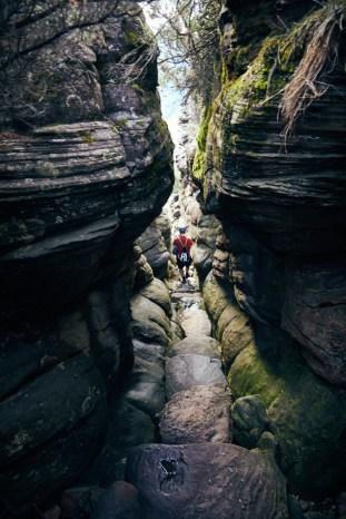 Silent Street, Grampians, Nationalpark, National Park, eng, düster, finster, Rückweg,