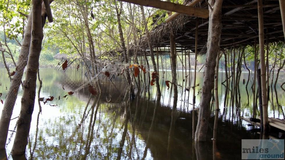 Reste der schwimmenden Märkte von Ayutthaya