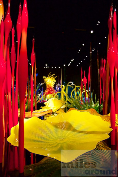 """Mille Fiori"" im Chihuly Garden and Glas Museum Seattle"