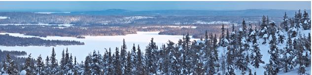 naturaleza Escandinava