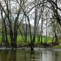 Koshkonong Creek