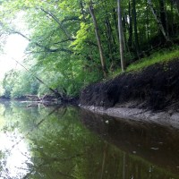 Root River