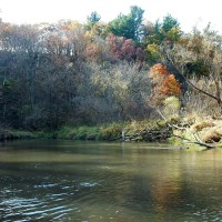 Pecatonica River East Branch