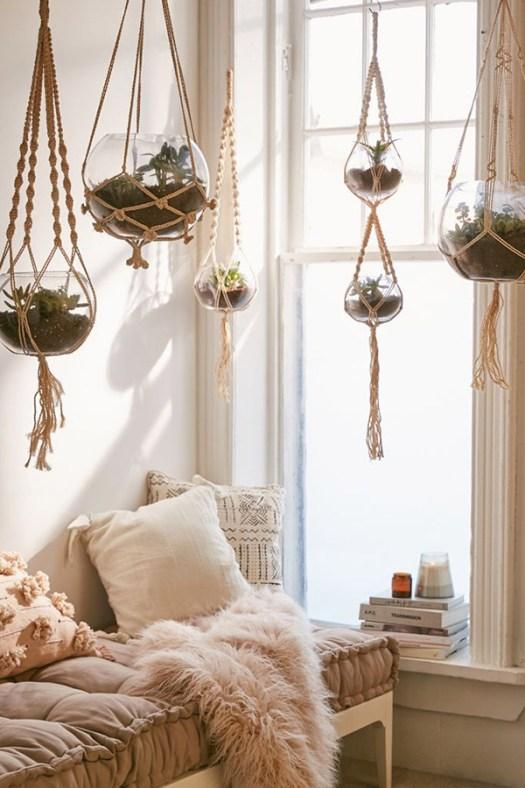 Suculentas colgantes con macramé para decorar la casa