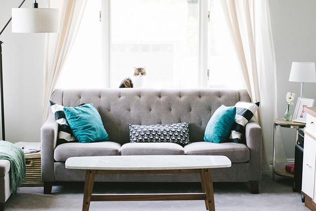Gri kanepeli küçük bir oturma odası