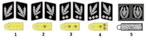 Generale der Waffen-SS