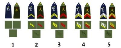 Звания команды французской армии