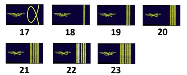 Staff and subaltern officers of the French Air Force
