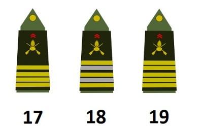 法国军队参谋
