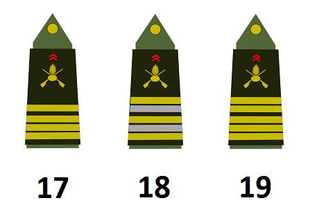 Stabsoffiziere der französischen Armee (Officiers supérieurs)