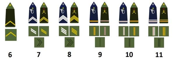 Unteroffiziere der französischen Armee (Sous-officiers)