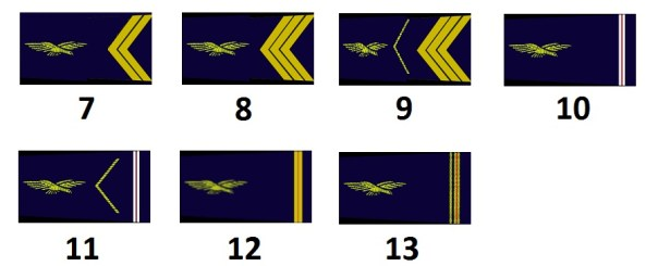 Noncommissioned officers of the French air force