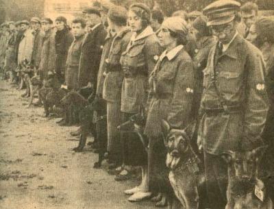 Образование советских армейских собак