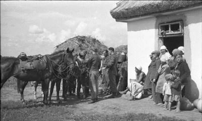Немецкие пехотинцы с лошадью в Советском Союзе