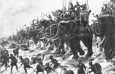 Военные слоны