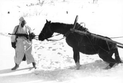 Soldat et cheval en hiver, campagne de Russie