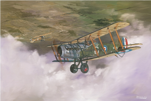 Bristol F2 Fighter biplane picture - Military Times - Mark Bromley