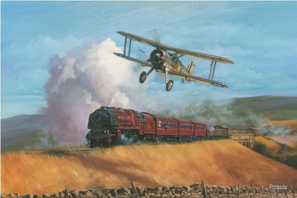 Gloster Gladiator picture - Military Times - Mark Bromley